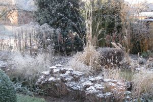 Die Beete im Winter