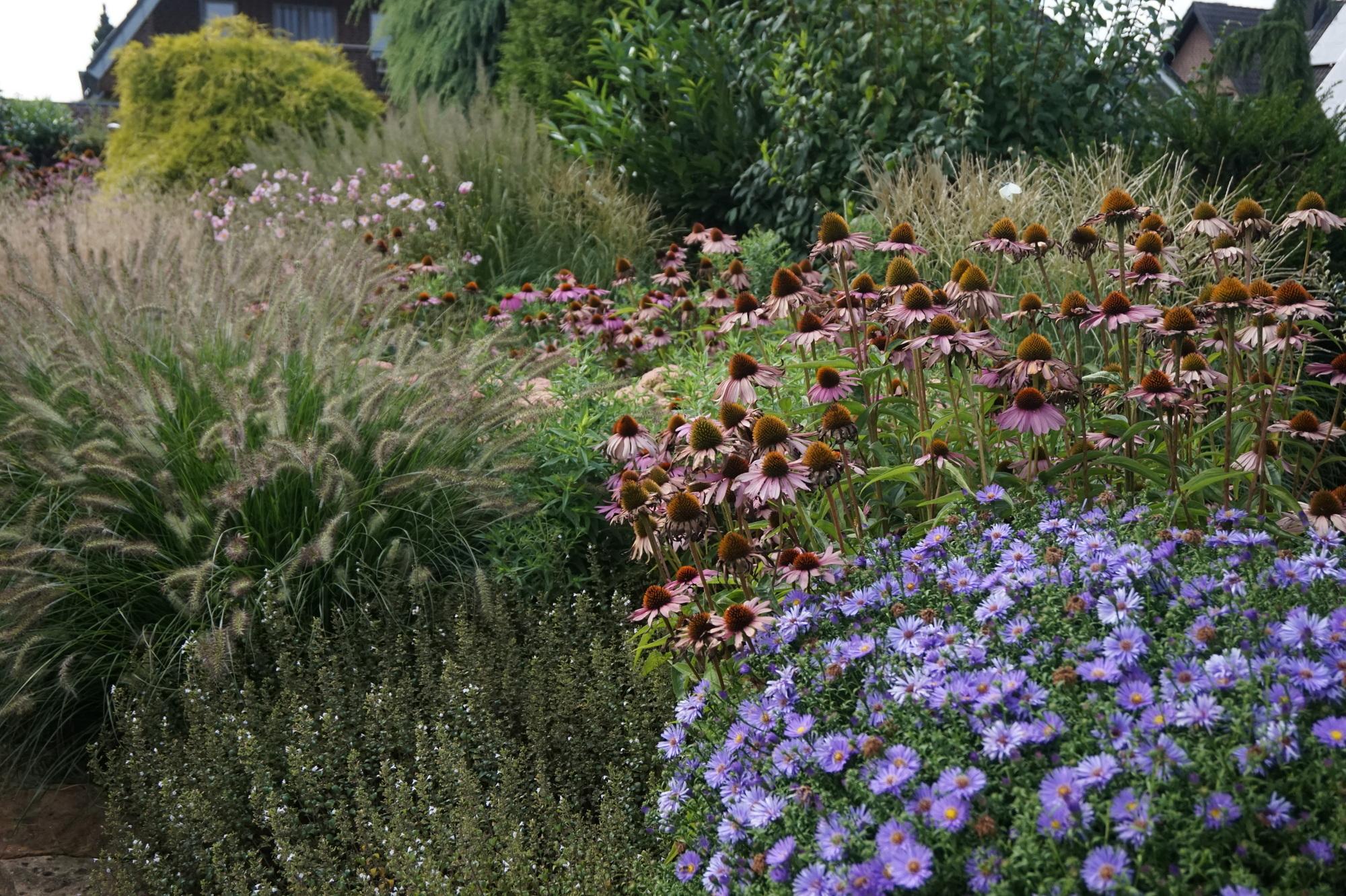 Terrassenbepflanzung & Hochbeet In Voller Sonne