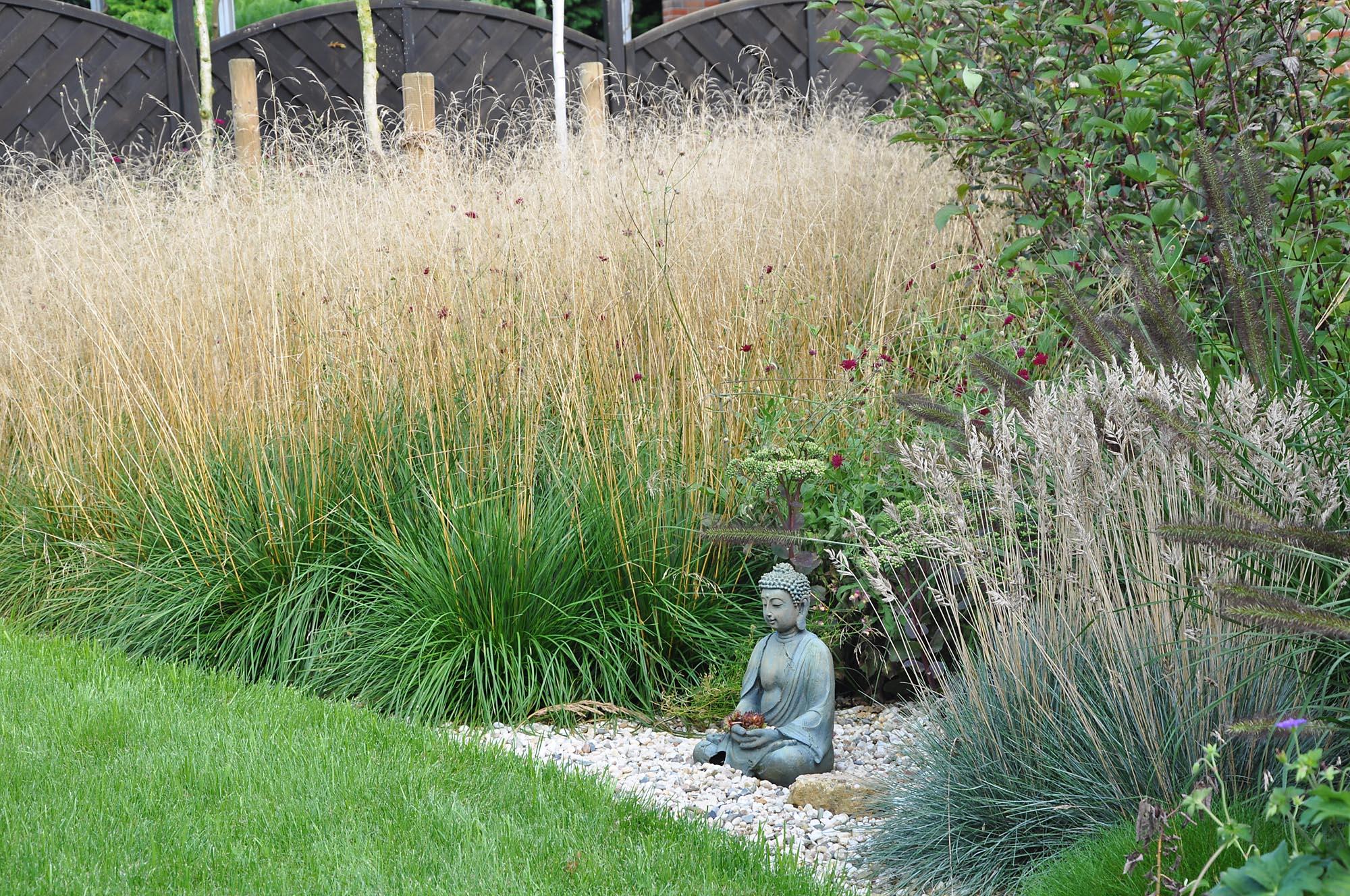 Gräser Im Garten gräsergarten pflanz konzept